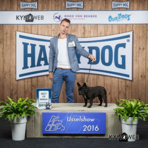 show-zwolle-best-of-breed